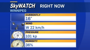 Right Now in Winnipeg